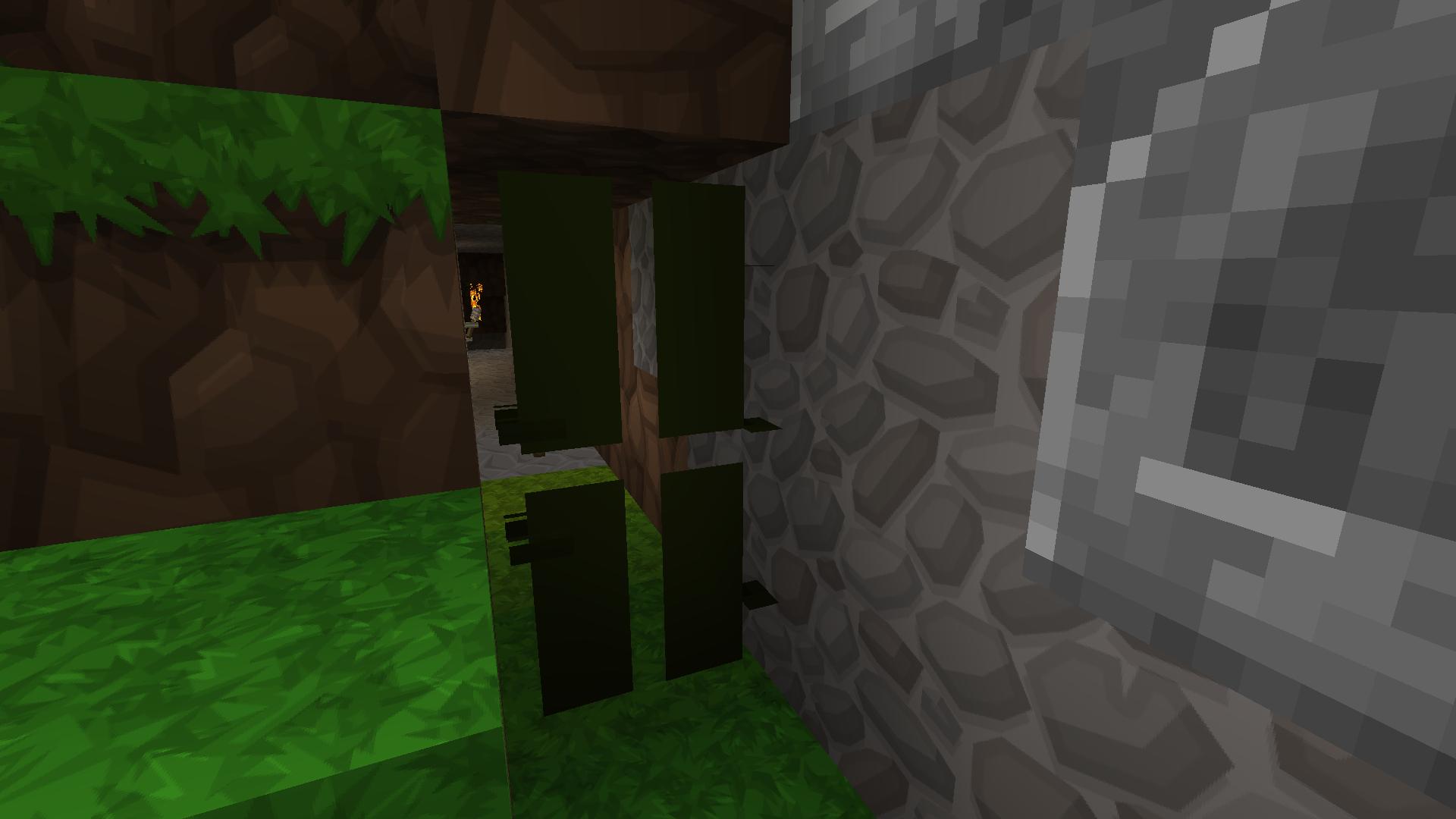 door bug